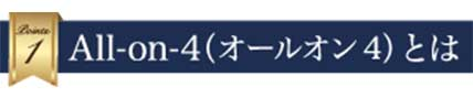 All-on-4 とは